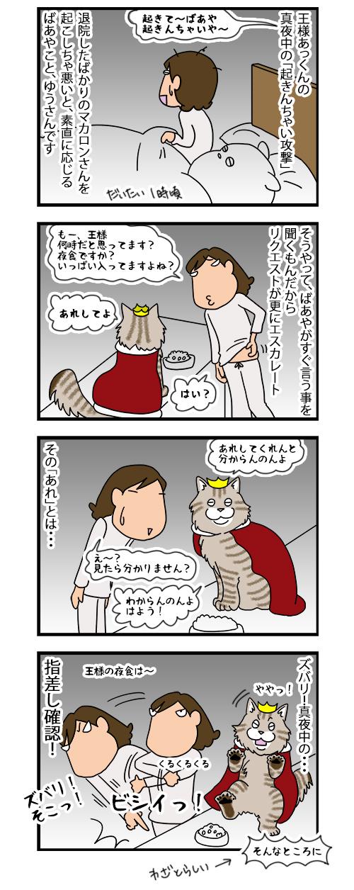 12122019_catcomic.jpg