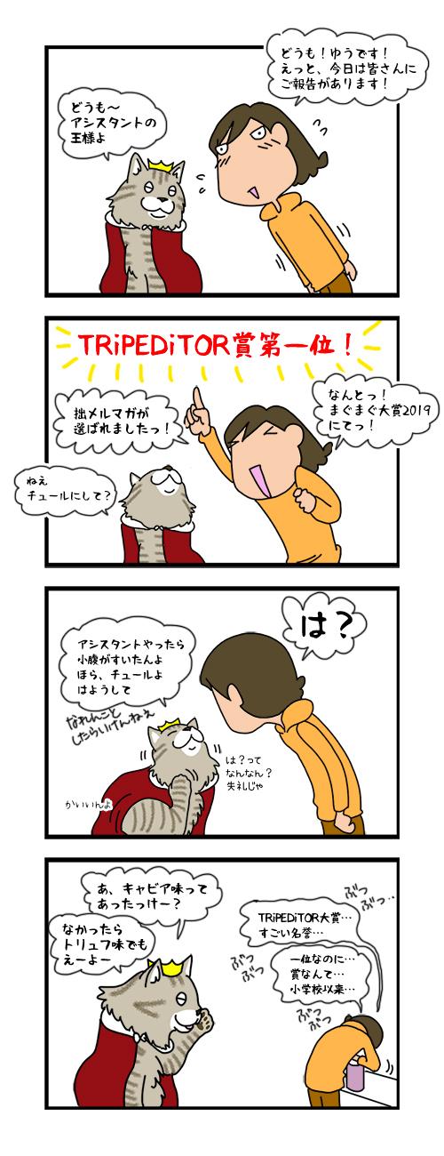 18122019_catcomic.jpg
