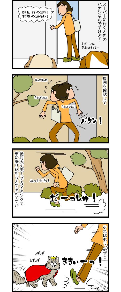 20012020_catcomic_1.jpg