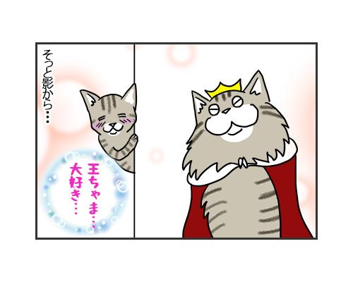 20092019_cat1.jpg