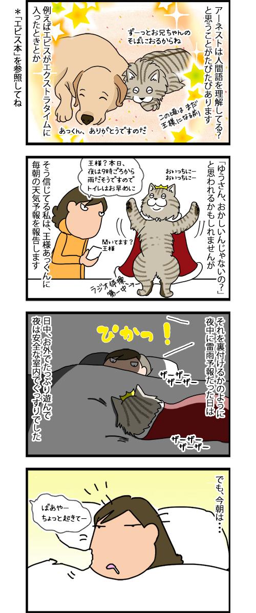 20122019_catcomic1.jpg