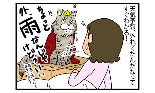 20122019_catcomic2B.jpg