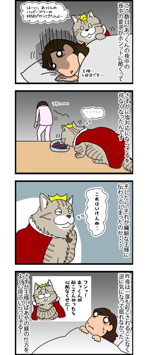 25022020_catcomic.jpg