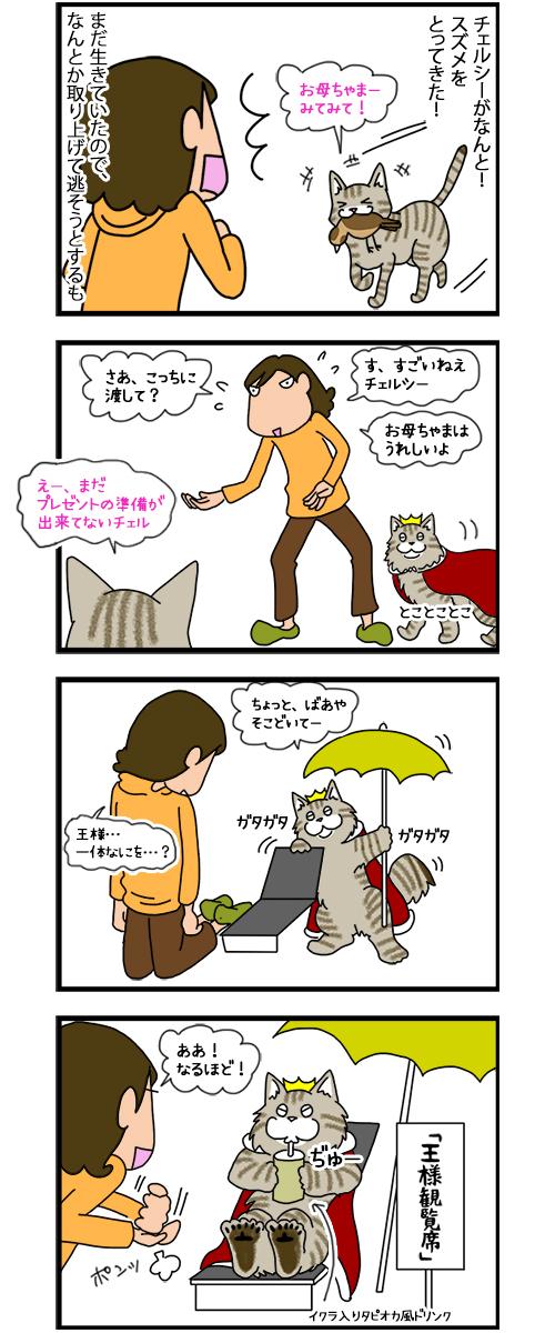 29122019_cat7koma_1.jpg
