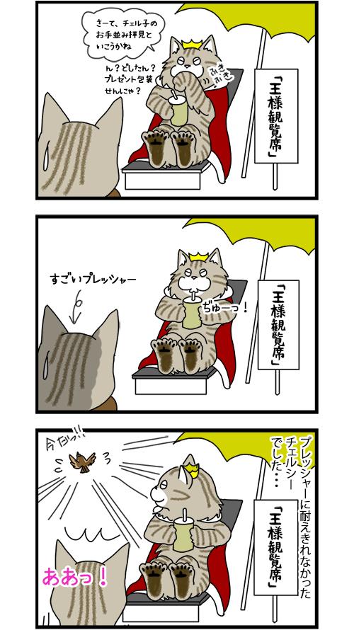 29122019_cat7koma_2.jpg
