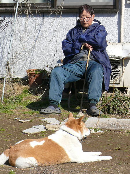 庭でひなたぼっこする父と寄り添うゴンタ2015/2/11