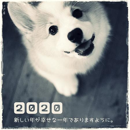 happynewyear2020.jpg