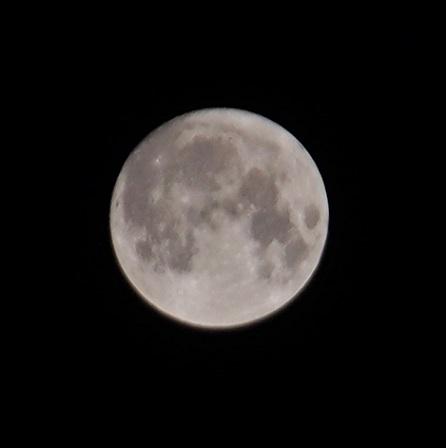 P9130005 仲秋の名月