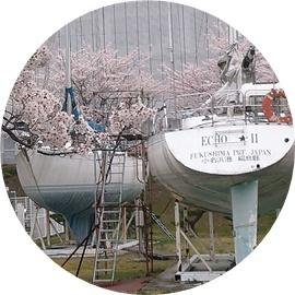 15 桜の時期は!!