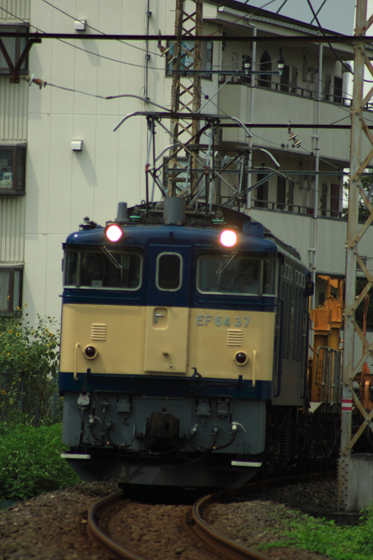 IMG_6959.jpg