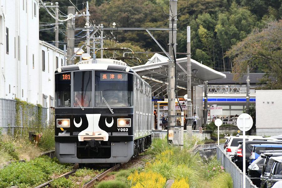 5538_うし電車Returns5