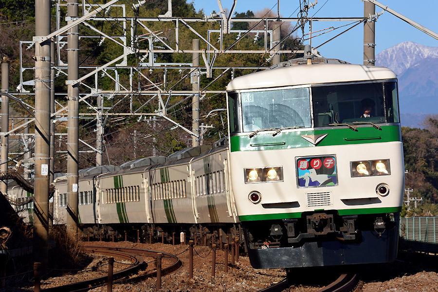5587_185系踊り子号