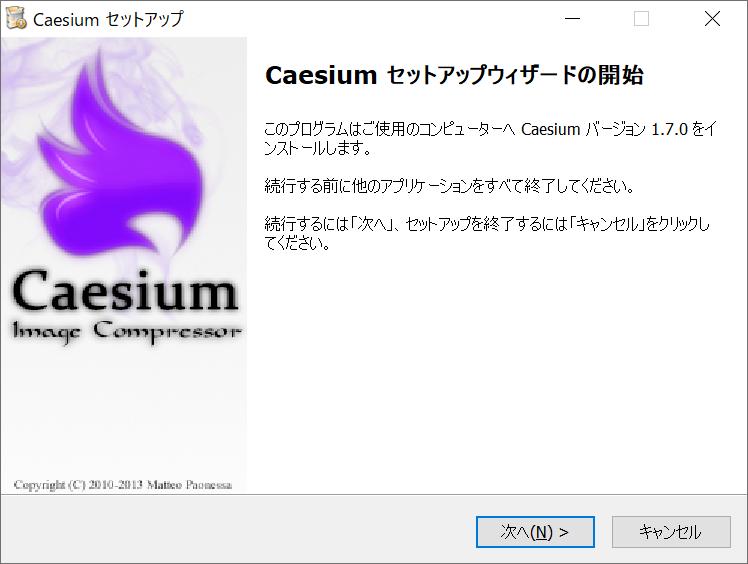 Caesiumインストーラー画面4