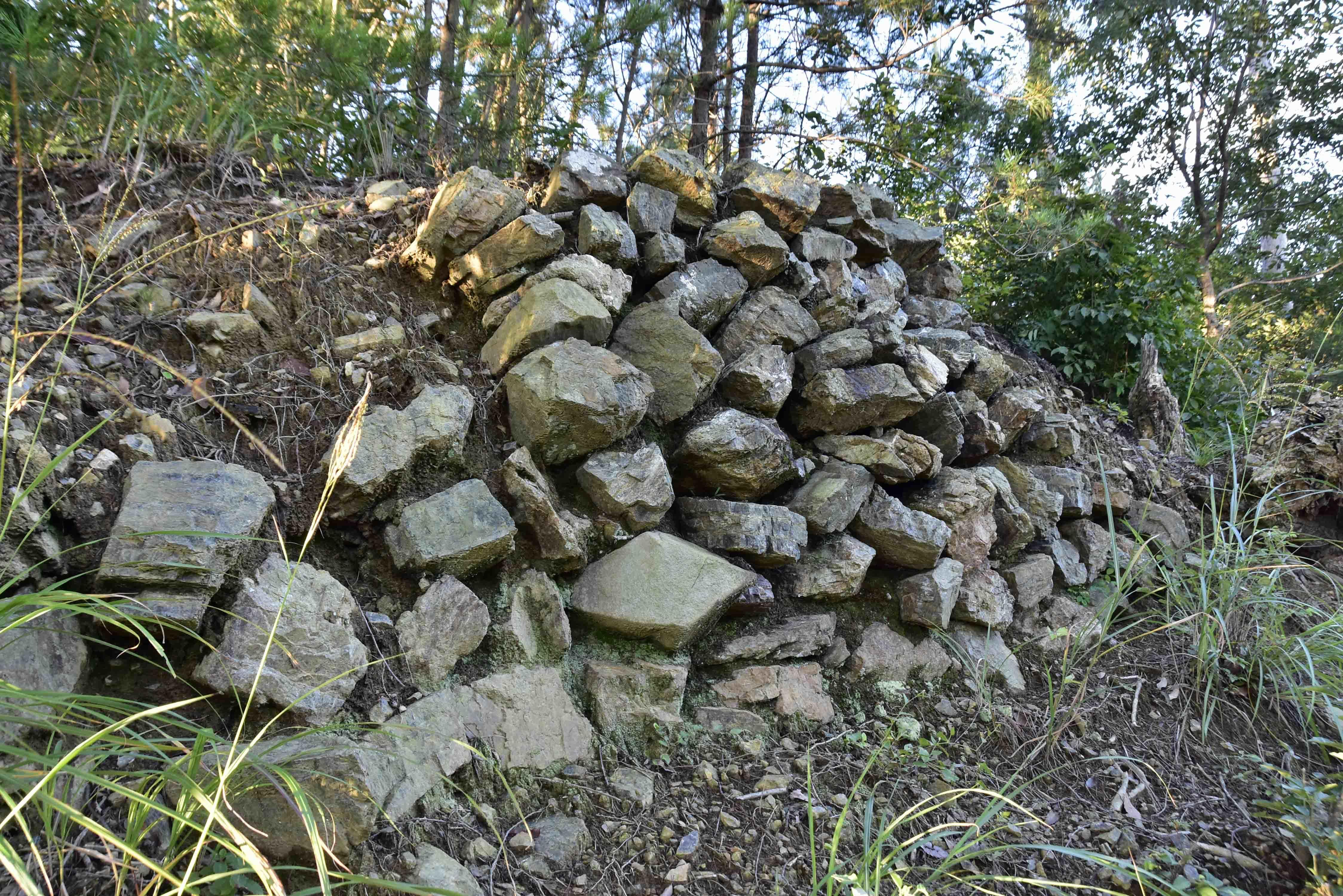 _DSC6702土櫓の石垣