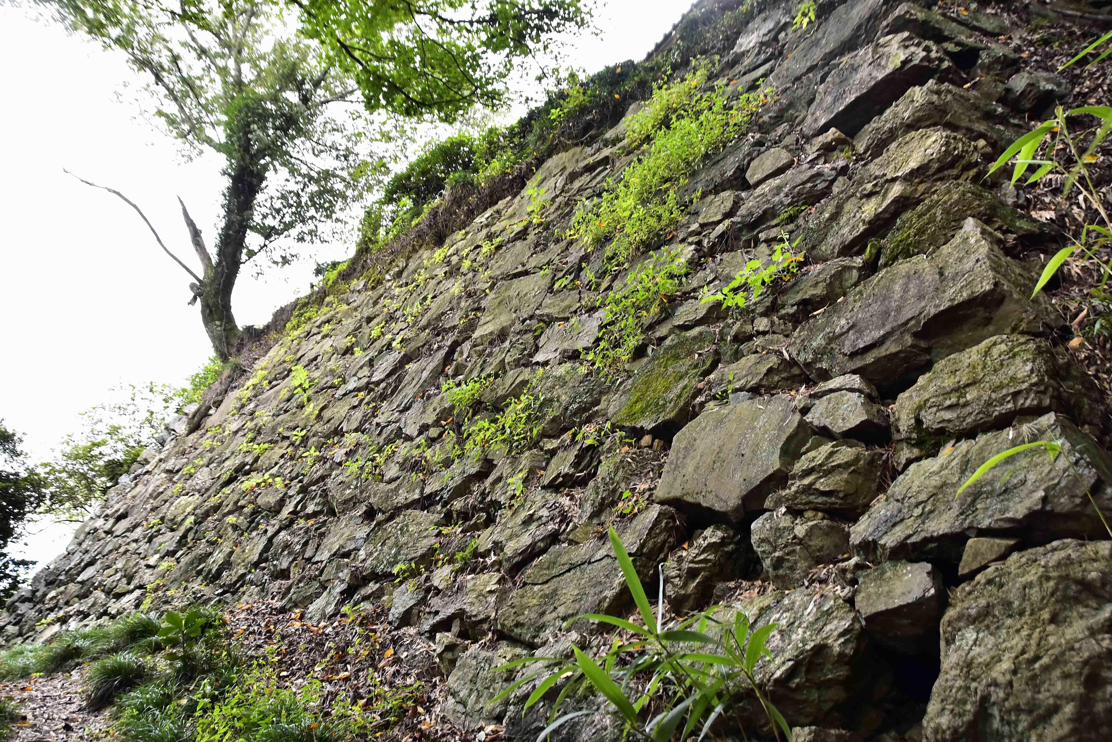 _DSC6788南城の石垣