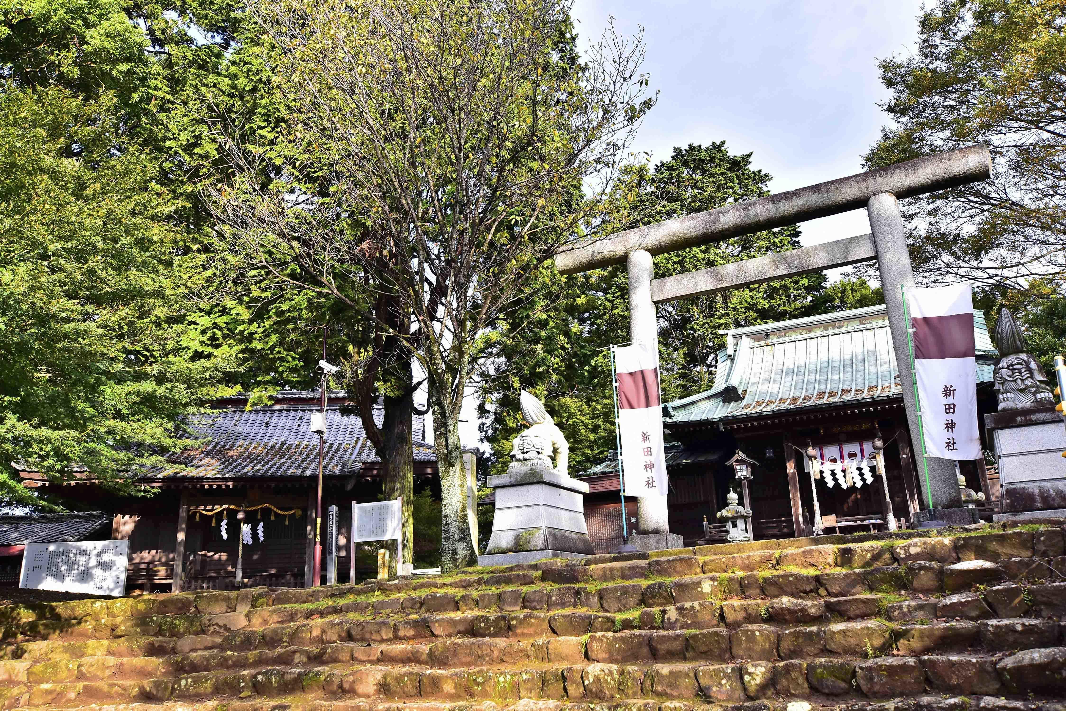 新田神社 実城