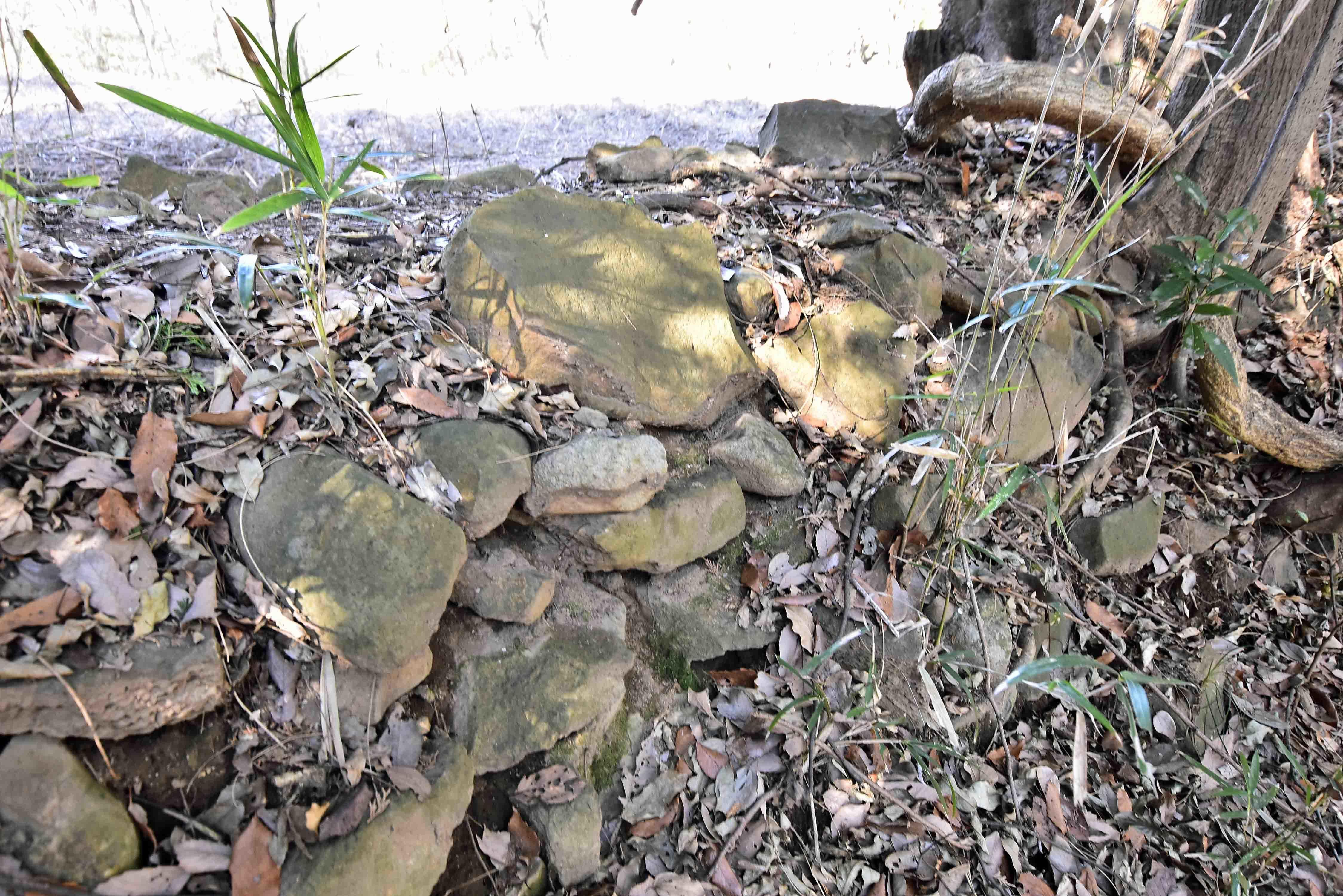 本丸の土塁に残る石積