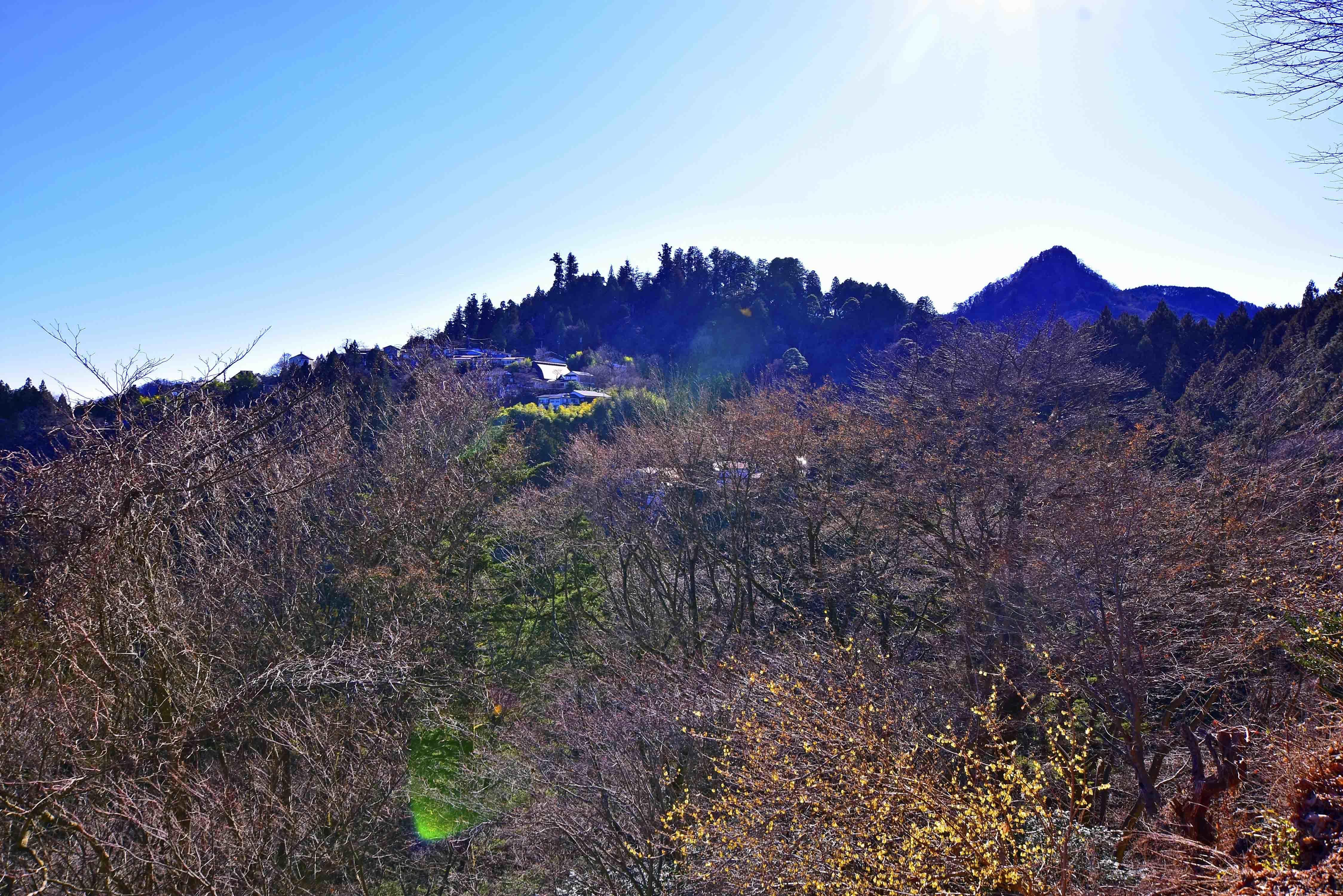 御嶽城 ケ-ブルカ-から望む