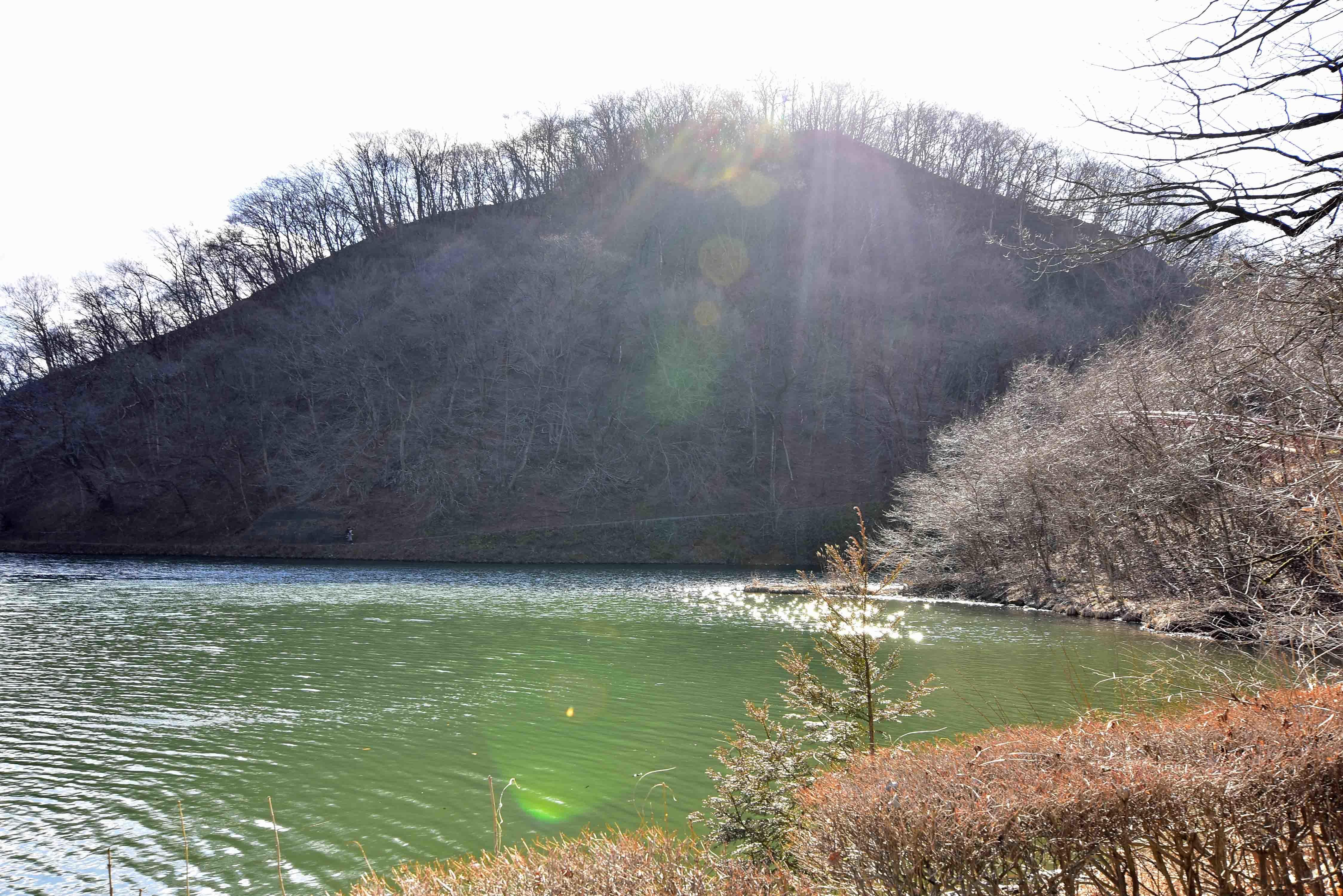 坂本城 北側から