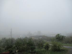 30霧 (1)