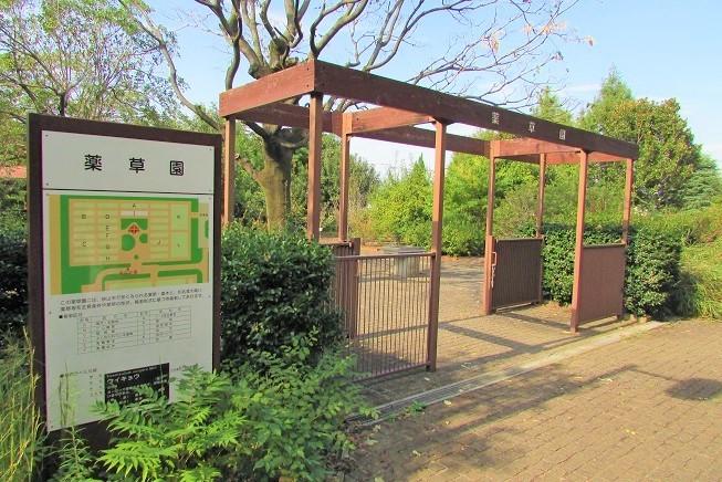 chikouzan190929-105.jpg