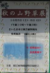 engei191005-117.jpg