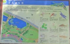 mizumoto190922-201.jpg
