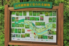 nogawa190916-201.jpg