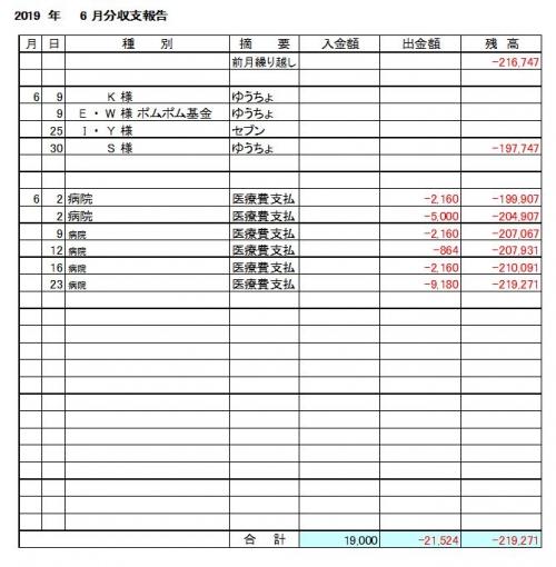 2019-06月分収支報告