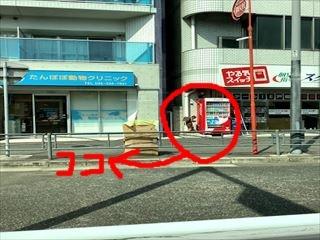 IMG_1610_R.jpg