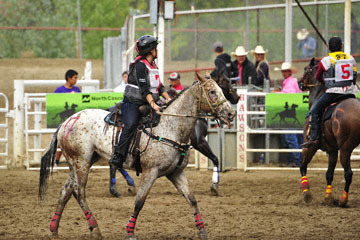 blog (6x4@300) Yoko 123 Omak Stampede, The World Famous Suicide Race, #7 Cowgirl 2_DSC3371-8.11.19.(3).jpg