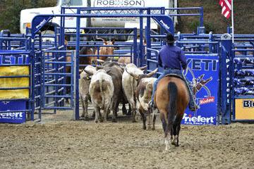 blog (6x4@300) Yoko 32 Gold Country Pro Rodeo, Bulls_DSC3971-4.28.18.(1).jpg