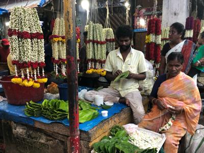 Mysore Mallige