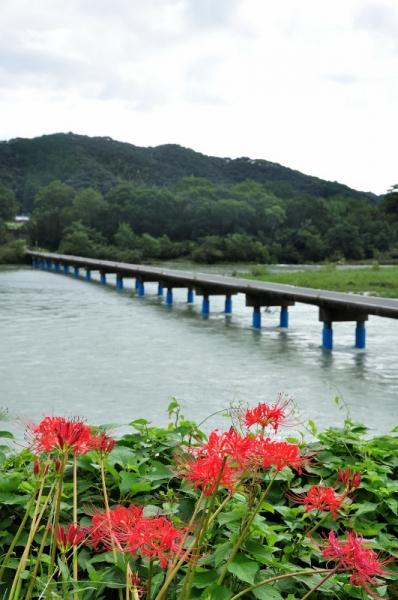 1佐田沈下橋190924