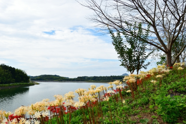 5宝山湖190928