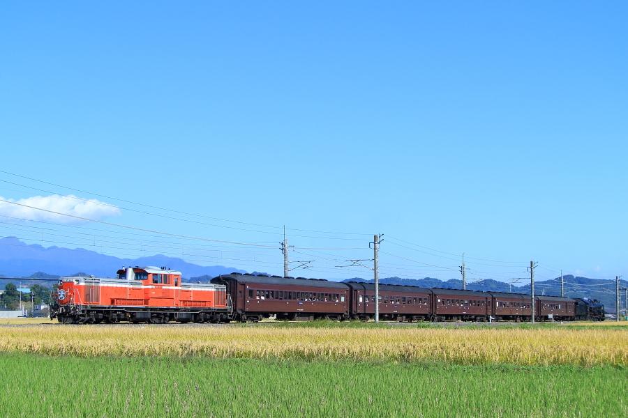 900-DD51-191028E1.jpg
