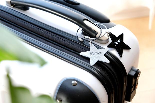 ダイソー・キーホルダー(ワイヤーリング、モノトーン、スター)・スーツケース①