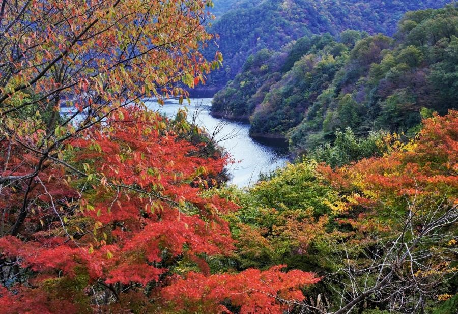 龍姫湖01