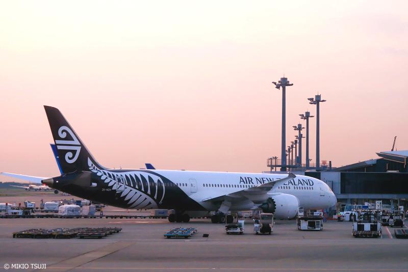 絶景探しの旅 - 1096 サーモンピンクの空とモノトーンのニュージーランド航空機 (成田空港/千葉県 成田市)
