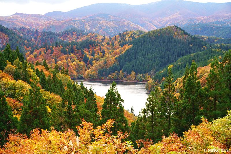 絶景探しの旅 - 絶景写真 1144 紅葉のシャワー 秋の太平湖 (秋田県 北秋田市 森吉)
