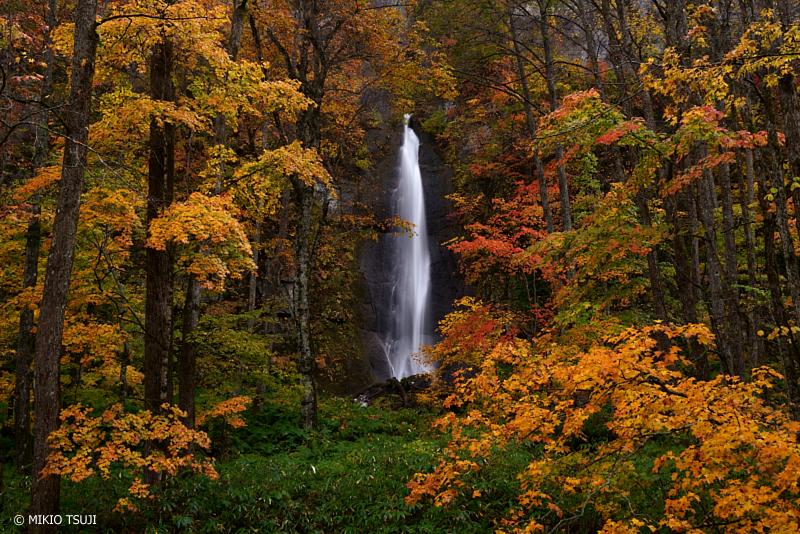 絶景探しの旅 - 絶景写真 1147 雨の紅葉の森 (白布の滝/青森県 十和田市)