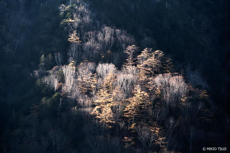 絶景探しの旅 - 絶景写真1155 スポットライト (小田代ヶ原/栃木県 日光市)