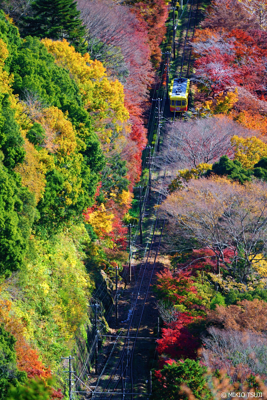 絶景探しの旅 - 絶景写真No.1158 紅葉の高尾山ケーブルカー (東京都 八王子市)