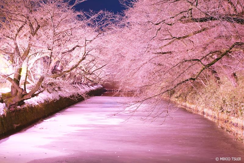 景探しの旅 - 絶景写真No.1204 冬の日本三大夜桜の弘前公園 (青森県 弘前市)