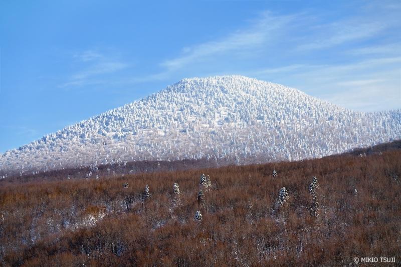 絶景探しの旅 - 絶景Photo No.1208 前嶽へと続く樹氷のグラデーション (八甲田山/青森市)