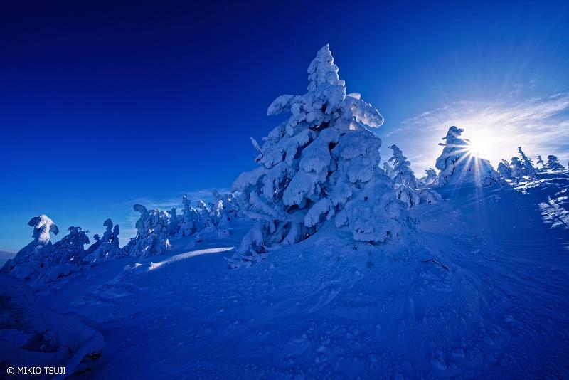 絶景探しの旅 - 絶景Photo No.1212 成長度30%未満の樹氷 (八甲田山/青森市)