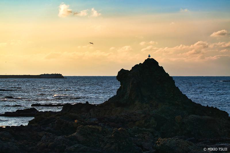 絶景探しの旅 - 絶景Photo No.1221 カモメたちのライオン岩 (青森県 西津軽郡 深浦町)